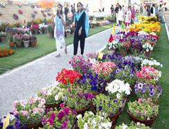 pakistan-flower-show