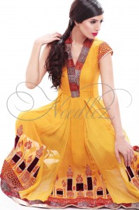 Winter Fall Collection 2011-12 Needlez by Shalimar