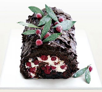 Chocolate and cranberry roulade